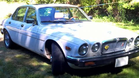 Show quality 1987 Jaguar XJ6 Series III for sale